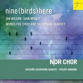 nine(birds)here